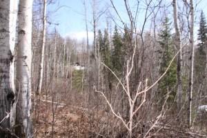 2 acre lot near Horsefly Lake