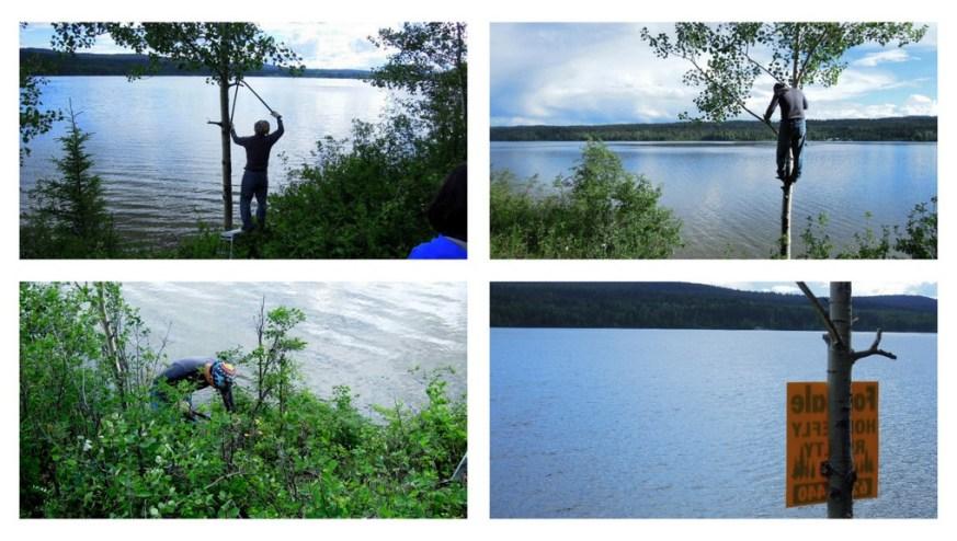 Lakefront-sign-posting