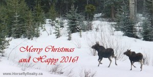 Horsefly Realty - Merry Christmas!