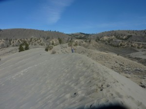 sand dune at Farwell Canyon