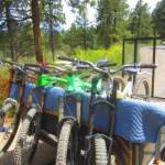 Log Chutes Downhill Mountain Bike Zone EA project analysis postponed indefinitely