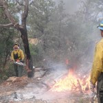 Wildfire/ prescribed fire photo essay, 2013, Southern Colorado, Northern New Mexico
