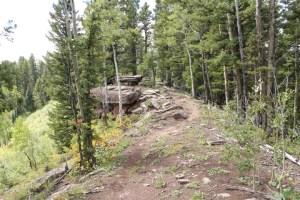 The ridge line on Big Lick Trail.