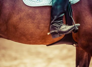 An Open Letter to Young Equestrians