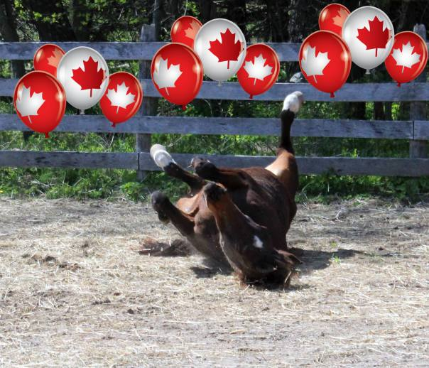 Kayla Canada Day
