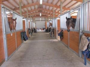 stalls spane buildings