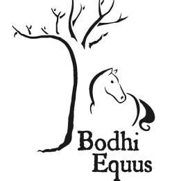 bodhiequus.com