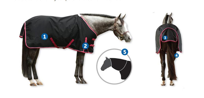 Heavy Horse Cotton Sheet With Tail Flap