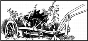 Hjulploven var den tids vigtigste redskab. Den fordrede 4-6 heste, afhængig af jordart, og 2 mand til betjeningen. Tegning af G. Knudsen