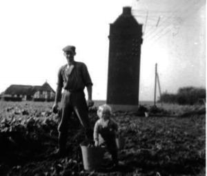 Optagning af kartofler ved Husoddevej, ca. 1962. Bemærk den nu nedlagte transformerstation.