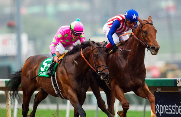 KENTUCKY DERBY 2015 Contenders: Dortmund wins again ...