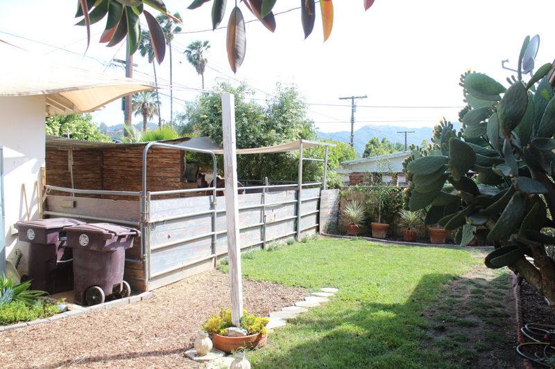 Horses in the City: Fira's Backyard Stall | Horses & Heels on My Backyard Living id=59553