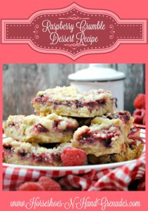 Raspberry Crumble Dessert Bars