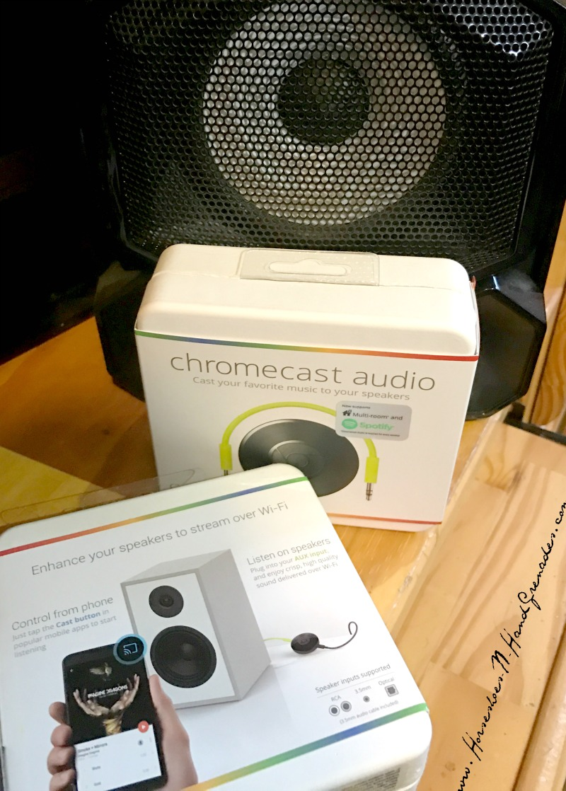 Chromecast Audio Speaker