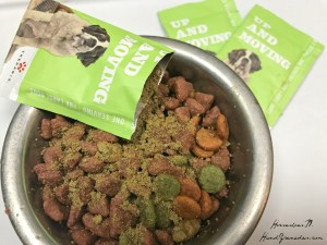 Can Hemp Help Your Dog #GrabTheLeash and Live Life's Adventures?