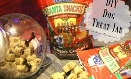 Naughty or Nice, Your Pets Will Love A DIY Dog Treat Jar