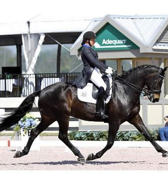 Debbie McDonald Observing Horses and Riders in Hopes of Developing Elite Competitors for U.S.