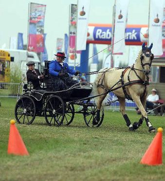 Para-Equestrian Developing Driver Clinics Presented by United States Driving for the Disabled
