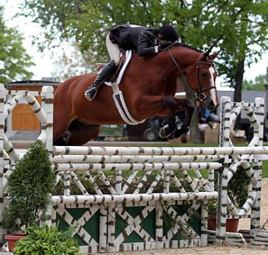 Kelley Farmer Leads Professional Hunter Divisions at Kentucky Spring Horse Show