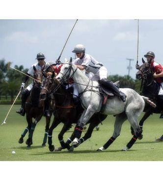 Pony Express Wins USPA Sun Cup at Grand Champions Polo Club; Pancho Eddy Named MVP