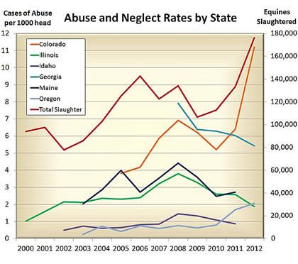 Study of Equine Abuse and Neglect Patterns Produces Surprising Findings