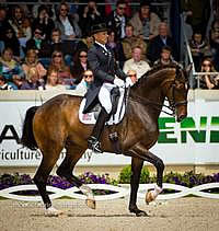 US Closes Out 2013 CHIO Aachen with Another Set of Strong Results on Final Day