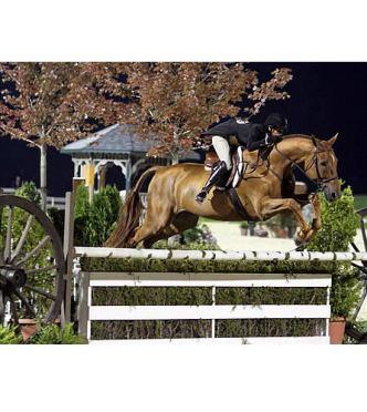 Liza Boyd Named 2013 USHJA International Hunter Derby Champion at Bluegrass Festival Horse Show