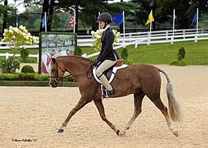 Sassafras Creek Named Medium Regular Pony Hunter Champion at 2013 US Pony Finals