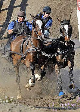 Para-Equestrian Developing Driver Clinic a Roaring Success