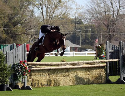 Gulf Coast Winter Classics Named World Championship Hunter Rider Event