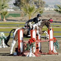 ©Flying Horse Photography. Katie Cook and Symphony jump their way to a win in the $1,500 Platinum Performance Hunter Prix at HITS Thermal.