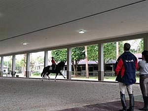 High Performance Riders Participate in 2014's First USEF Dressage Observation & Strategic Planning Session