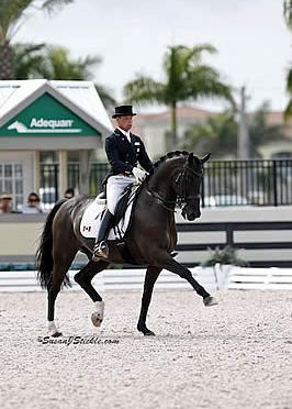 Olympian David Marcus to Perform Dressage Exhibition at Trump Invitational