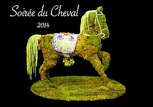 "USET Foundation's ""Soirée du Cheval"" Features Fabulous Live Auction Items"