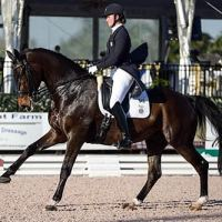 Adrienne Lyle and Wizard during the 2014 Stillpoint Farm CDIO3* Nations Cup