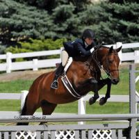 Sayre's client Marisa Haag on her mare Taylor Made 2013 Zone 8 Champions in the Amateur Adult Hunters 18-35.