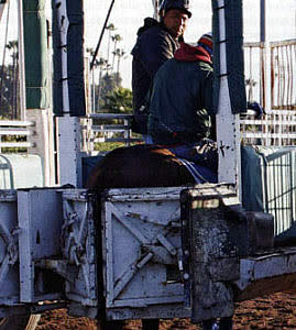 Go behind the Gates of a Horse Race