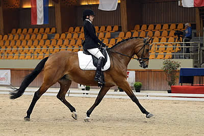 US Para-Dressage Individual Athletes Complete European Tour in France and Belgium