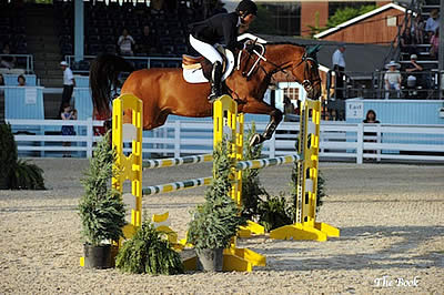 Nancy Hooker and Corianos Boy Win Adult Amateur Jumper Classic at Devon Horse Show