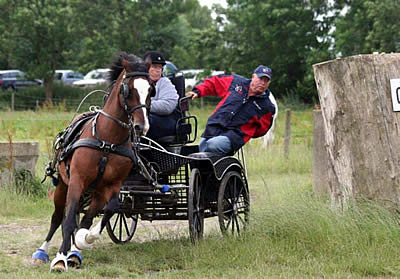 US Para-Driving Team Prepares for the 2014 FEI World Para-Equestrian Driving Championships Only Days Away
