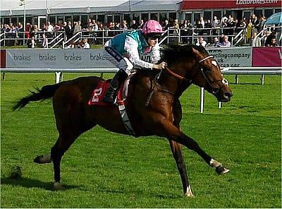 Royal Ascot Odds