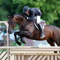 ©ESI Photography. Harold Chopping and Caramo pocketed another $5,000 Devoucoux Hunter Prix