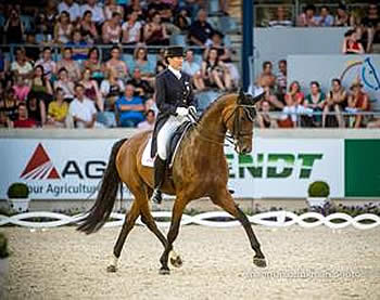 Raine and Wilcox Land in Top Seven in CDI4* Aachen's Lindt-Prize