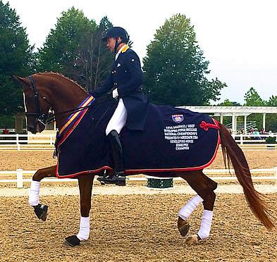 Everglades Dressage's Donatus Wins 2014 Markel/USEF Developing Horse Grand Prix