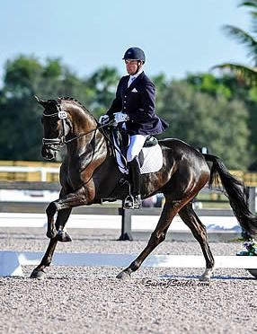 Endel Ots Prepares to Compete at USEF National Young Horse Championships
