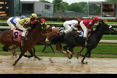 Online Casinos and Horse Racing