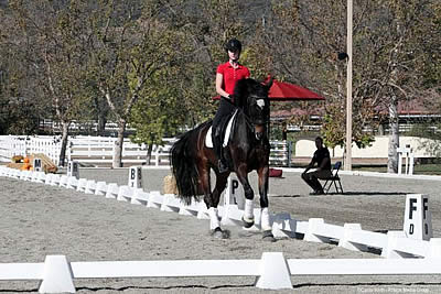 Talented US Hopefuls Gain Valuable Knowledge at USEF/USET Foundation Dressage Pipeline Clinic