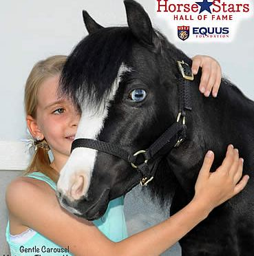 Therapy Horse Magic Inducted into the Horse Stars Hall of Fame