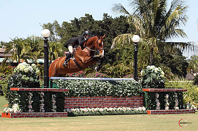 Colvin and Vaillero Win $50k USHJA International Hunter Derby to Conclude 2015 WEF