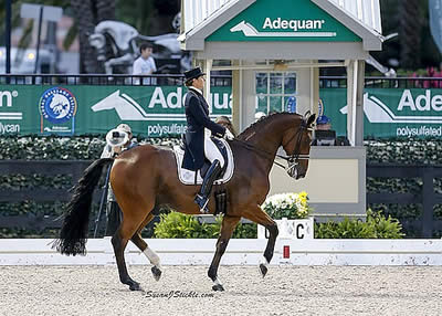 Vilhelmson-Silfven and Divertimento Add Another FEI Grand Prix Special Win at AGDF 9